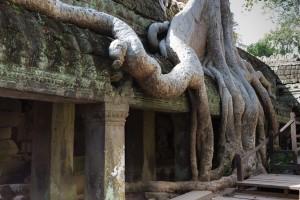 LC_0904: Cambodia - Angkcor site