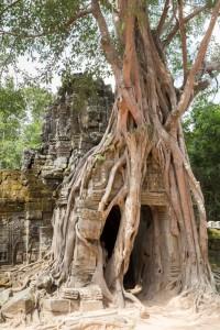 LC_0997: Cambodia - Angkor site