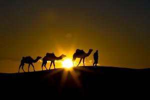 KA_0548: Morocco - Camel driver at down