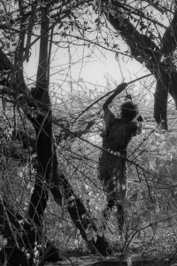 La caccia_006: Botswana- Bushmen hunting