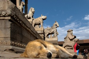 NE_0834: Neoal - Sleeping at  the foot of the temple