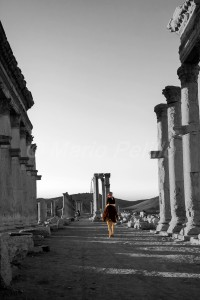 SI_0245: Sirya - Palmyra