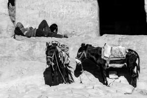 SI_1267: Jordan - Rest in Petra