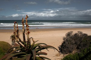 SU_0015: Southafrica - A beach on Indian ocean