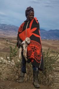 SU_0798: Lesotho - Young shepherd