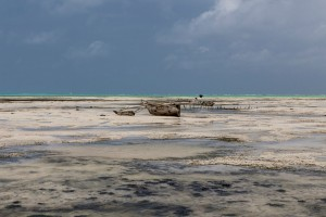 TA_0511: Tanzania - Low tide in Zanzibar