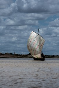 TA_3120: Mali - Sailing on Niger river